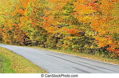 ősz, ország, -, autózás