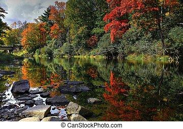 ősz parkosít, folyó