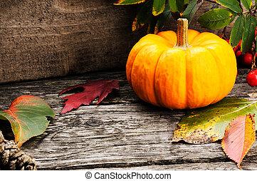 ősz, sütőtök, bogyók, rowan, csendélet