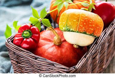 ősz, sütőtök, egyezség