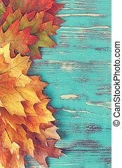 ősz, színes, zöld