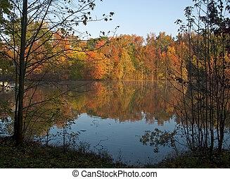 ősz, tavacska