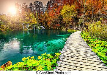 ősz, természetjáró, színes, erdő, plitvice, tavak, csodálatos, horvátország, gyalogjáró