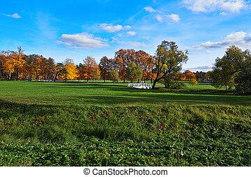 ősz, város, különböző, park., befest