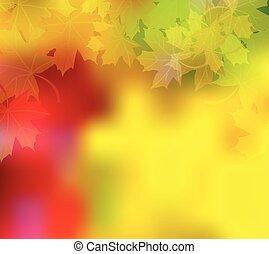 ősz, vektor, színes, háttér