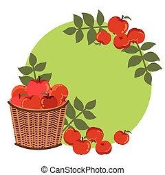 őt lap, dekoráció, alma, ősz, kosár, vesszőfonás