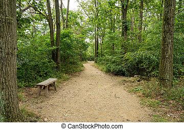 ścieżka, ława, niezależnie, opuszczony