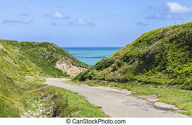 ścieżka, do, przedimek określony przed rzeczownikami, plaża