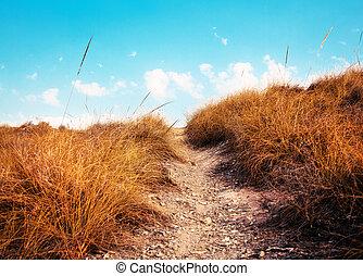 ścieżka, niebo