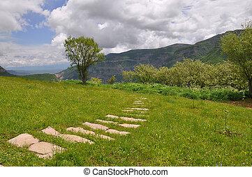 ścieżka, w, przedimek określony przed rzeczownikami, trawa