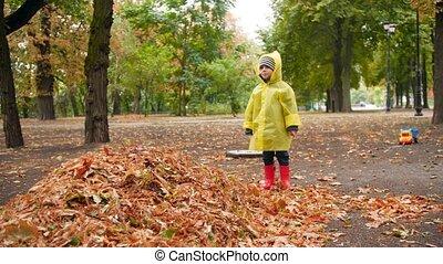 ścierka, upadły, chłopiec, park, radosny, drzewo, 4k, cielna...
