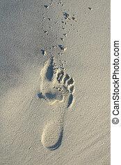 ślad stopy, piasek plaża, białe tło