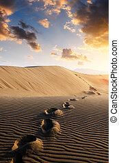 ślady, piasek, pustynia