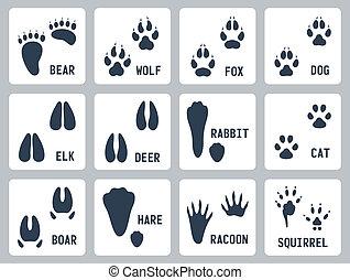 ślady, wektor, komplet, zwierzęce ikony