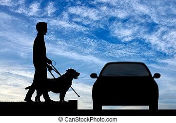 ślepy, trzcina, pies, krzyż, niepełnosprawny, osoba, ...