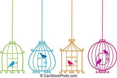 śliczny, birdcages, z, sprytny, ptaszki, v
