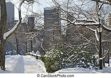 śnieg, most, środkowy park