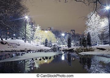 środkowy park, w nocy, nyc