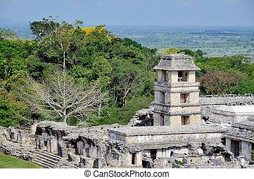 świątynia, od, przedimek określony przed rzeczownikami, hrabia, w, palenque, meksyk