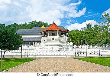 świątynia, od, przedimek określony przed rzeczownikami, poświęcony, ząb, relikt