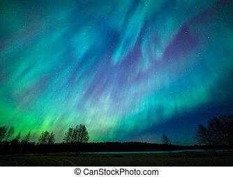 światła, jutrzenka, północny, krajobraz, borealis