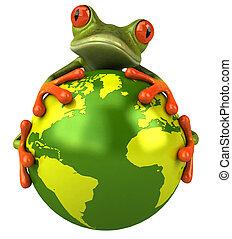 świat, żaba