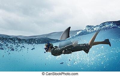 świat, rekin, handlowy