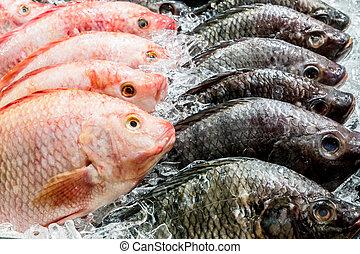 świeża ryba, targ