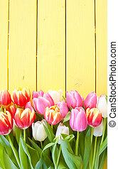 świeże kwiecie, barwny, wiosna