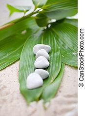 świeży, bambus, liście, z, biały, zdrój, kamienie