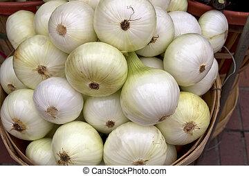 świeży, białe cebule