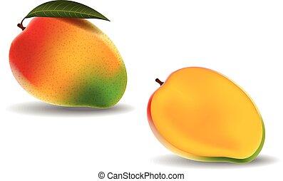świeży, biały, mangowiec, odizolowany