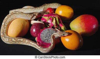 świeży, egzotyczny, balowe pytony, owoce