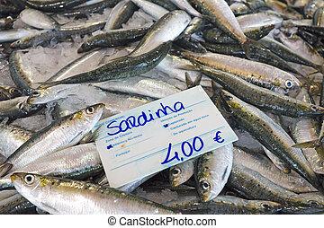 świeży, fishmarket, sardynki