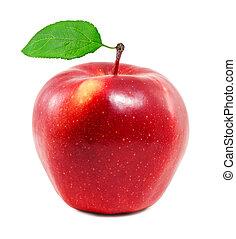 świeży, jabłko, czerwony