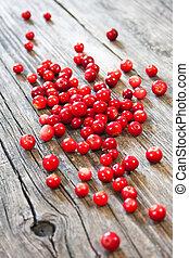 świeży, jagody, czerwony