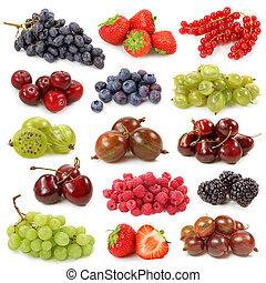 świeży, jagody, zbiór