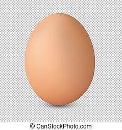 świeży, jajko, odizolowany, tło, przeźroczysty