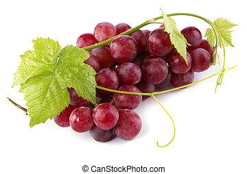 świeży, liście, czerwone winogrona
