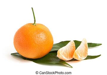 świeży, liście, mandarynka, segmenty