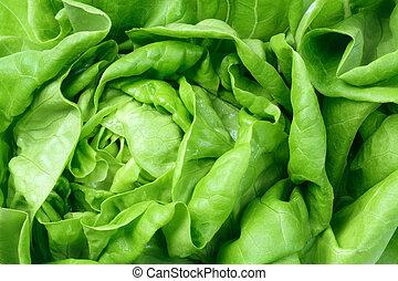 świeży, liście, zielona sałata, sałata