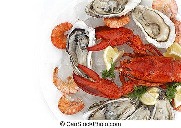 świeży seafood
