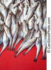 świeży, targ, ryby