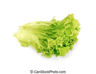 świeży, zielony liść, sałata, na białym, tło