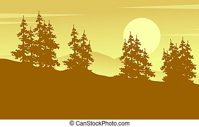 świerk, sylwetka, wektor, sztuka, las