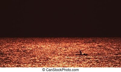 świt, malawi, jezioro, netto, rybak, wyrzucanie