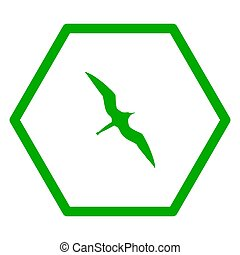 šestiúhelník, fregata ptáci