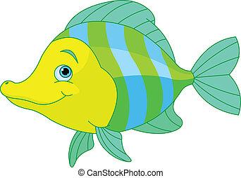 šikovný, fish