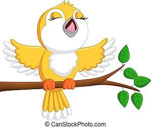 šikovný, zpěvavý pták