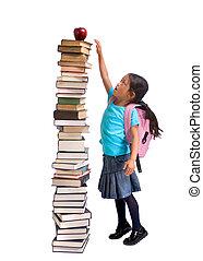 školství
